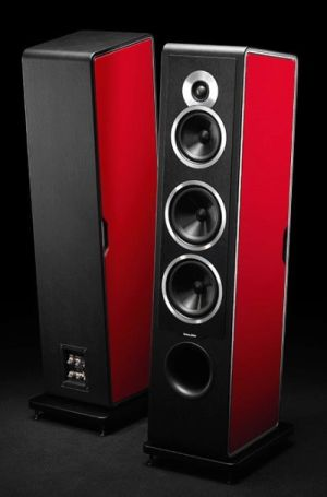 Sonus Faber Chameleon T speakers.